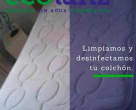 ecolanz-0417-2